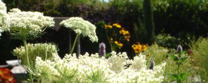California-Mediterranean Fusion Garden
