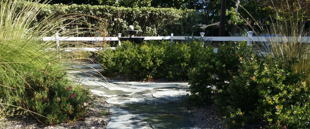 Flagstone Path Meanders Through California Native Plant Garden, Menlo Park, CA